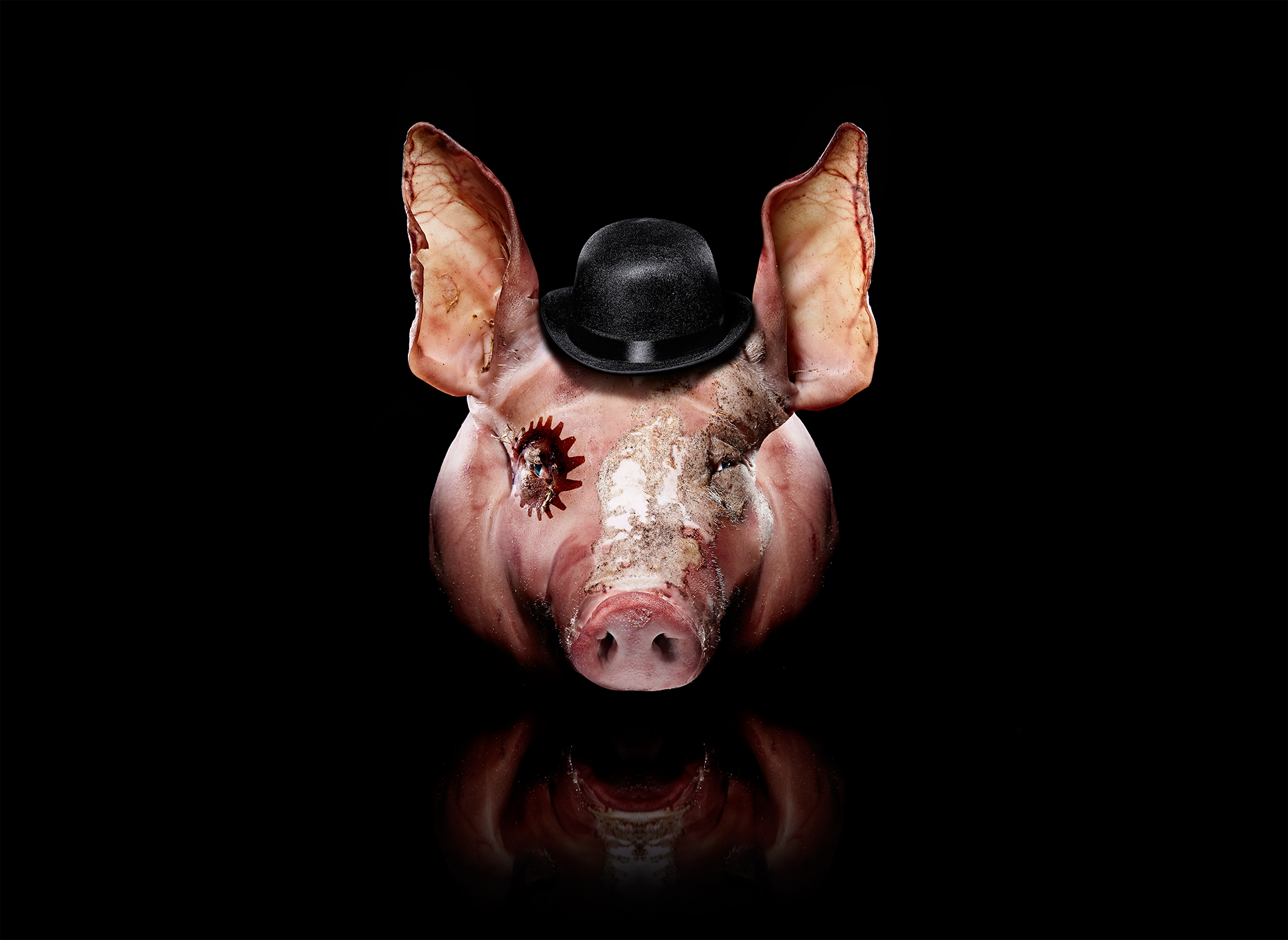 Clockwork Swine